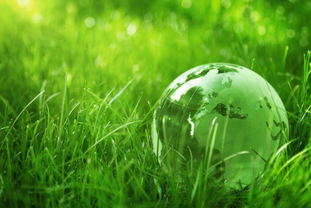 Globo mundial verde sobre cesped